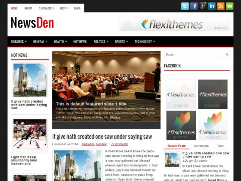 NewsDen WordPress Theme