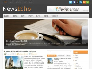 Permanent Link to NewsEcho