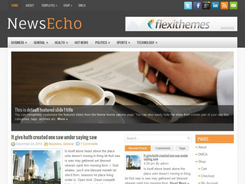 NewsEcho WordPress Theme