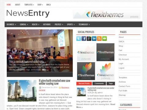 NewsEntry WordPress Theme