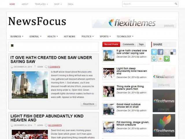 NewsFocus Theme Demo