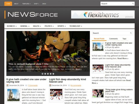 NewsForce WordPress Theme