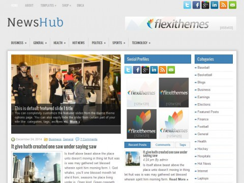 NewsHub WordPress Theme