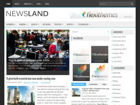 Permanent Link to NewsLand
