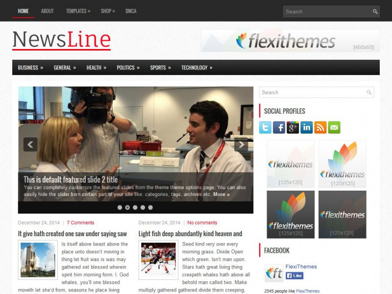 NewsLine - A Free News/Magazine WordPress Theme by FlexiThemes