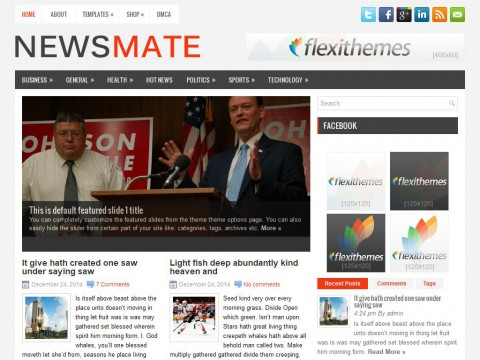 NewsMate WordPress Theme