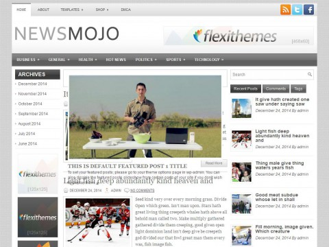 NewsMojo WordPress Theme