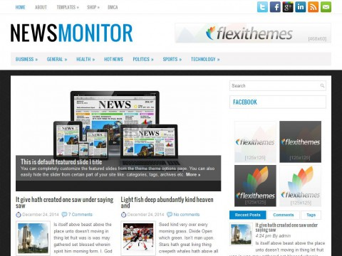 NewsMonitor WordPress Theme
