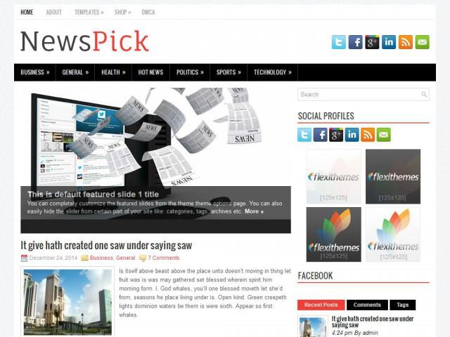 NewsPick Theme Demo