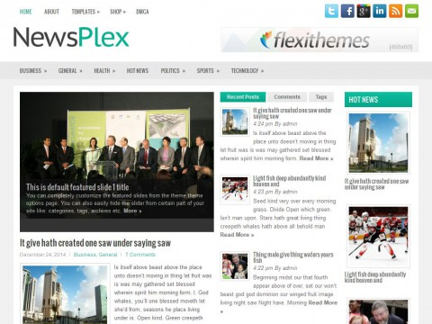 NewsPlex WordPress Theme