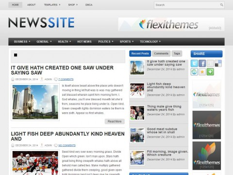 NewsSite WordPress Theme