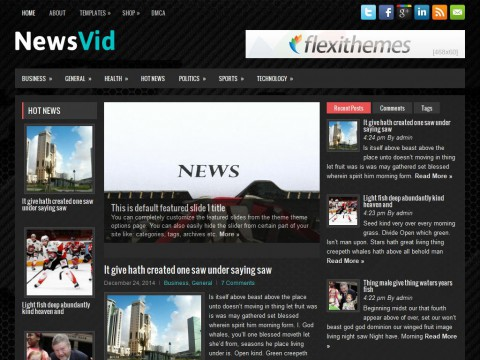 NewsVid WordPress Theme