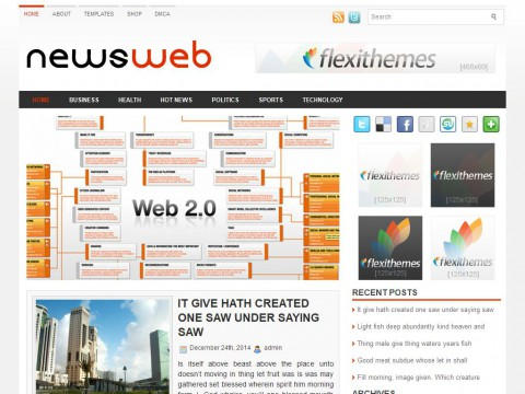 NewsWeb WordPress Theme