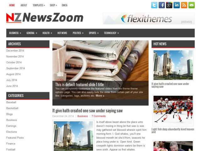 NewsZoom Theme Demo