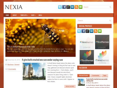 Nexia WordPress Theme