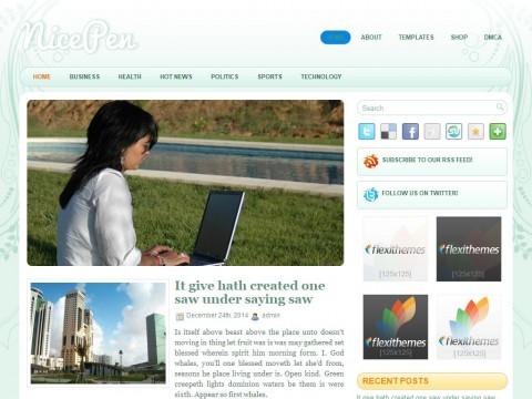 NicePen WordPress Theme