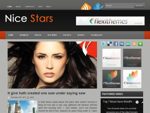 Nice Stars WordPress Theme