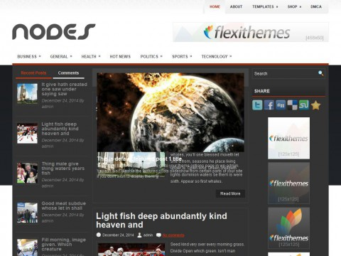 Nodes WordPress Theme