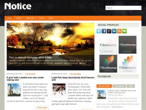 Notice WordPress Theme