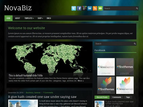 NovaBiz WordPress Theme