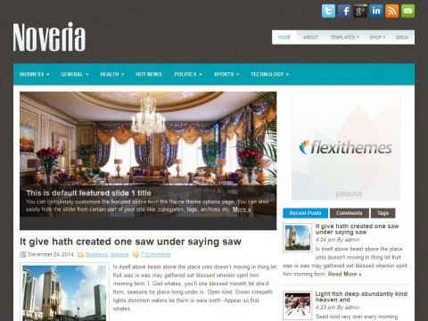 Noveria WordPress Theme
