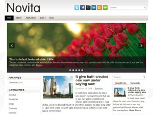 Novita WordPress Theme