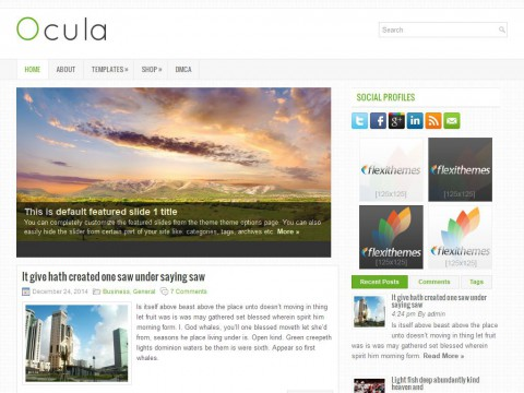 Ocula WordPress Theme