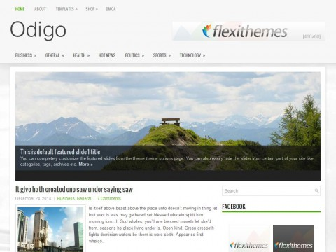 Odigo WordPress Theme