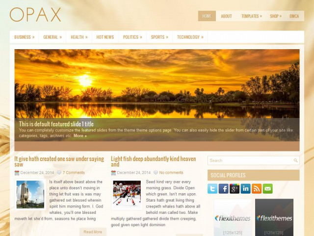 Opax Theme Demo