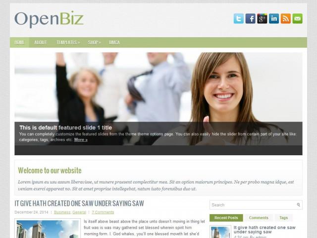 OpenBiz Theme Demo