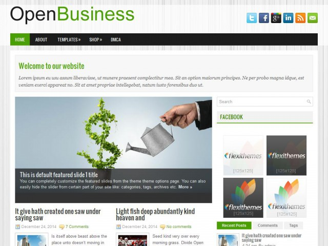 OpenBusiness Theme Demo