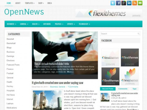 OpenNews WordPress Theme