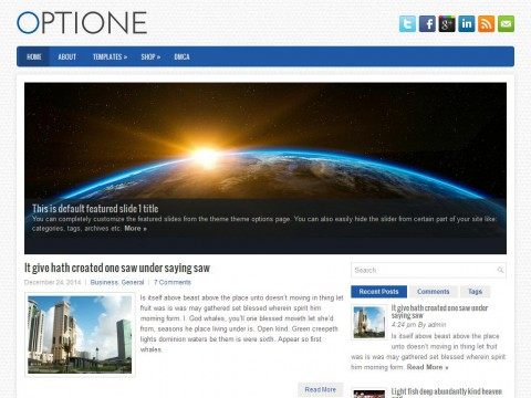 Optione WordPress Theme