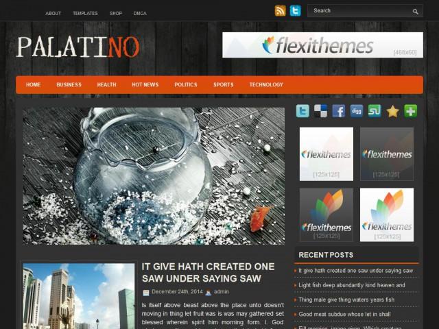 Palatino Theme Demo
