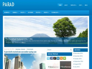 Parad WordPress Theme