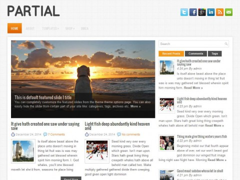 Partial WordPress Theme