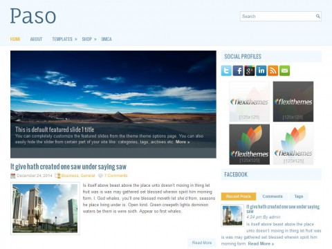 Paso WordPress Theme