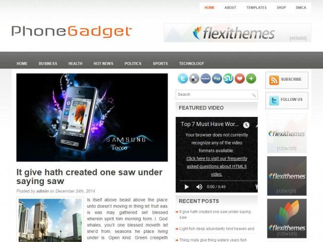 PhoneGadget Theme Demo