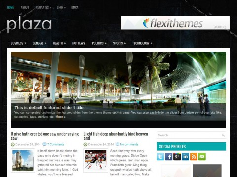 Plaza WordPress Theme