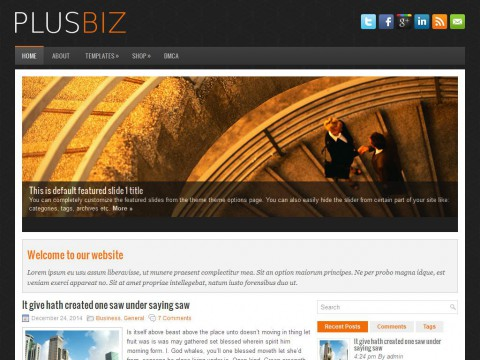 PlusBiz WordPress Theme