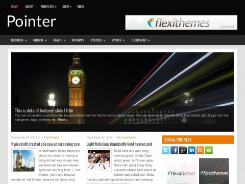 Pointer WordPress Theme