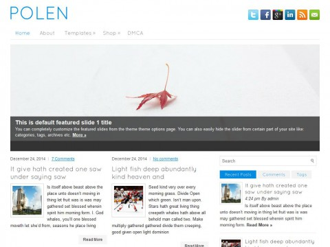 Polen WordPress Theme
