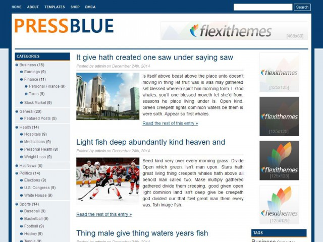 Press Blue Theme Demo