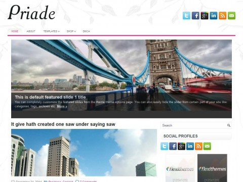 Priade WordPress Theme