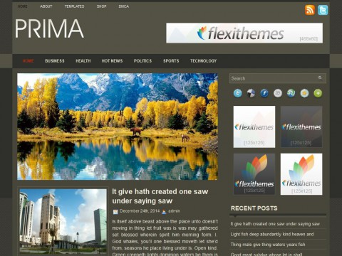 Prima WordPress Theme