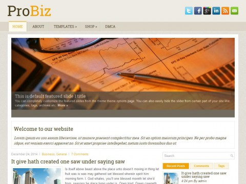ProBiz WordPress Theme