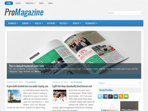 ProMagazine WordPress Theme