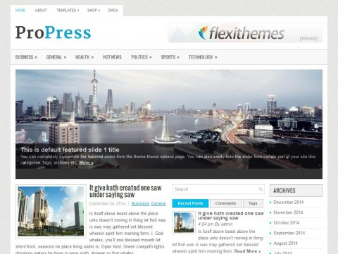 ProPress WordPress Theme