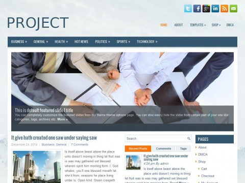 Project WordPress Theme