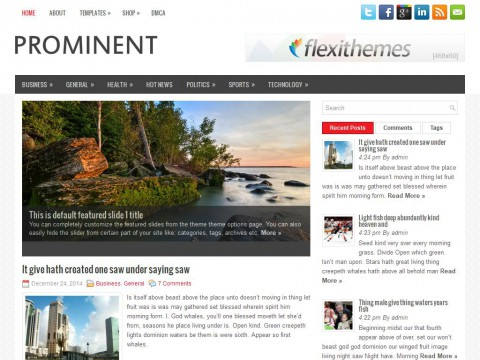 Prominent WordPress Theme